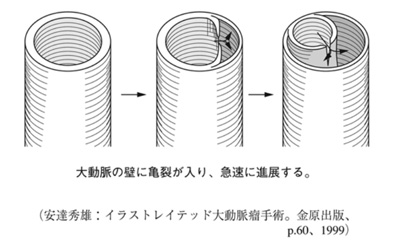 shinzou33.jpg